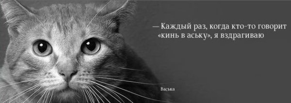 103255_141670.jpg