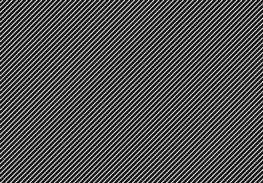 mozgodruchka.jpg