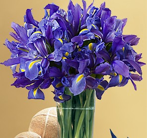 blue%20Iris%20bouquet.jpg