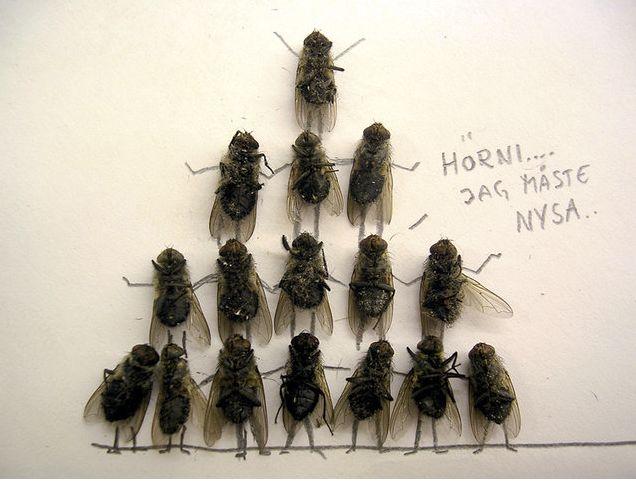 large_dead_flies_art_11.jpg