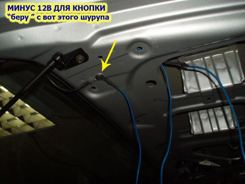 D19.jpg
