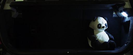 svet2.jpg
