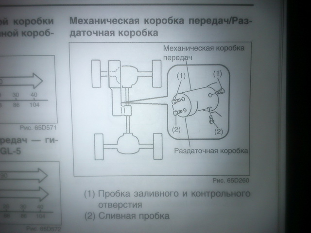 DSC_0419-1.jpg